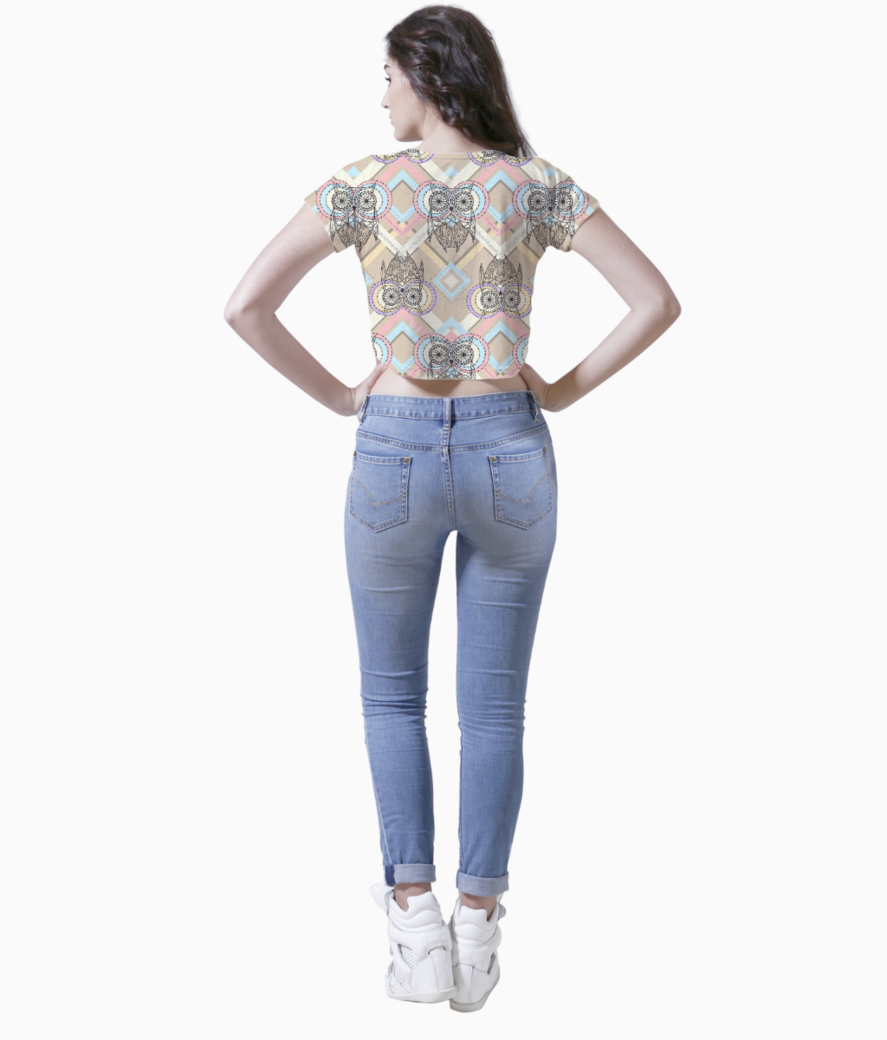 Aztec pattern with owls crop top back