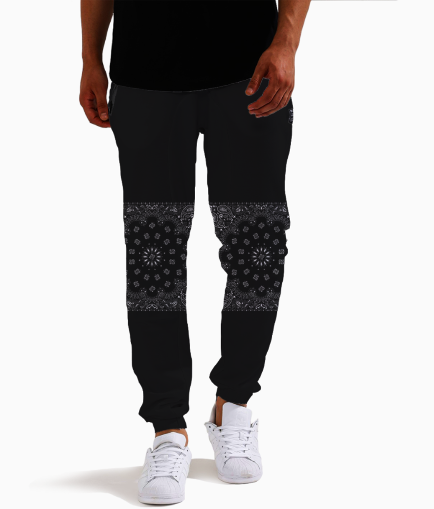 Paisley stripes joggers front