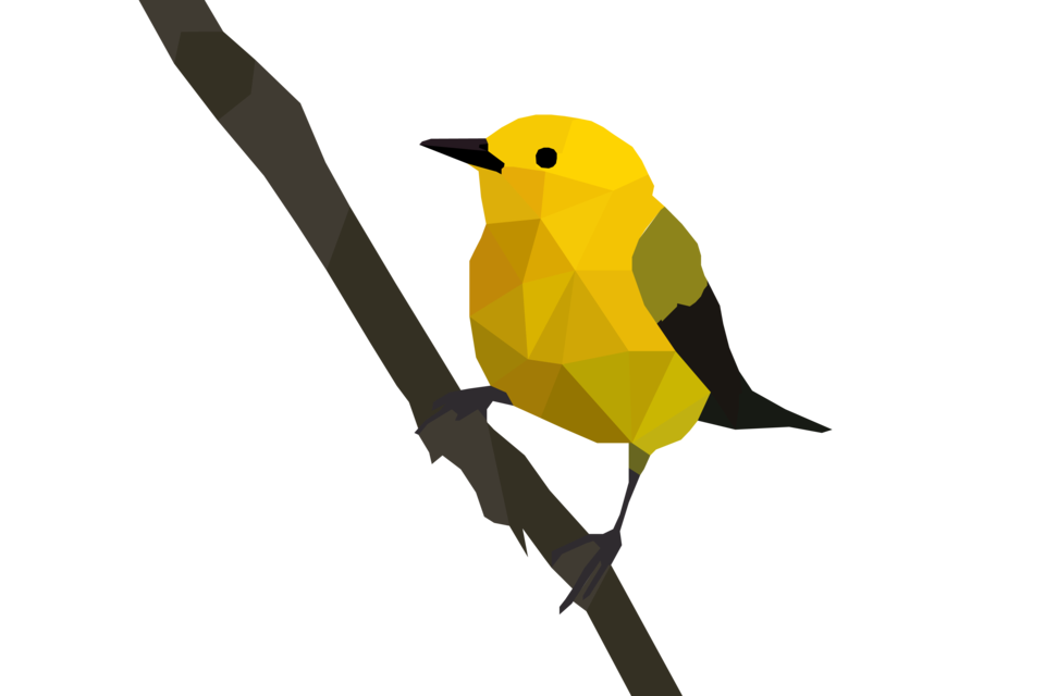 Prothonotary warbler origami art