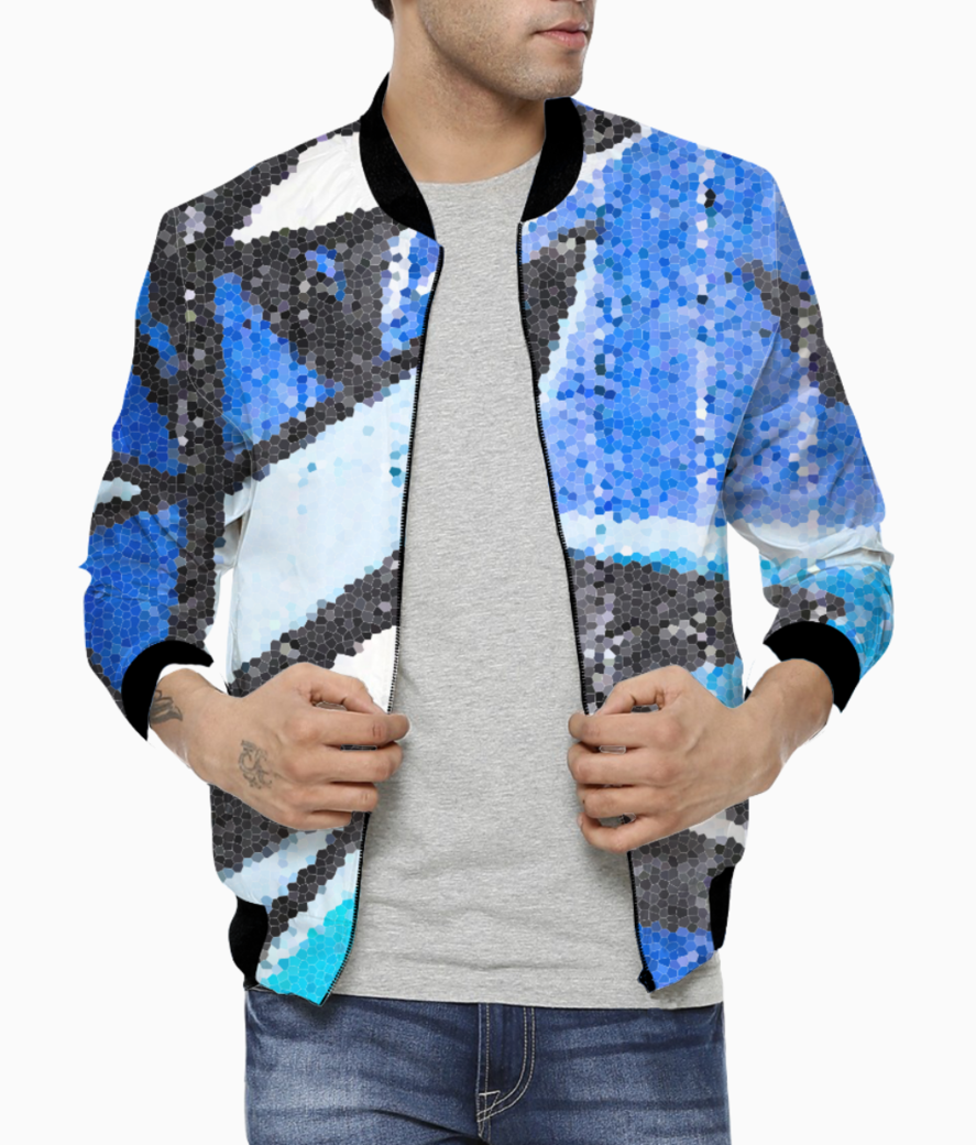 Blue bricked bomber front